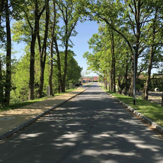Przebudowa ul. Koziej w Szczecinie
